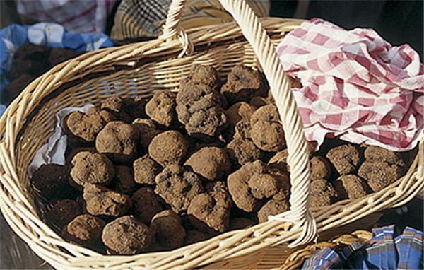 I Grande 2365 jus de truffes.net